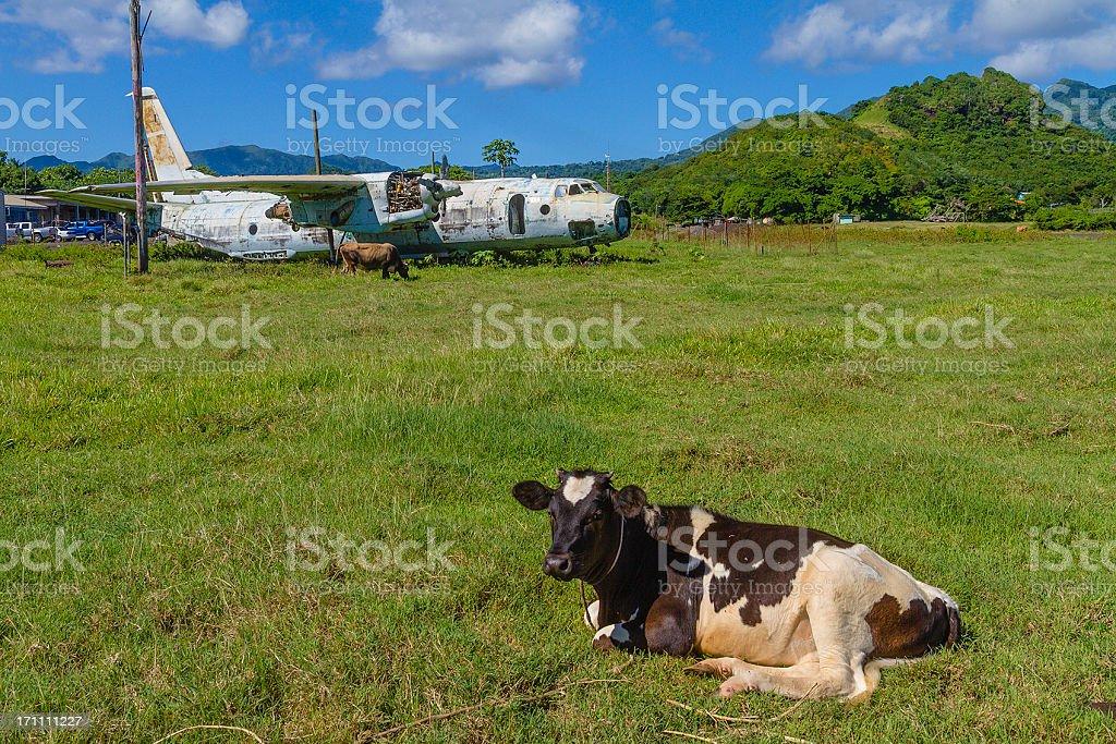 Pearls Airport, Grenada W.I. royalty-free stock photo