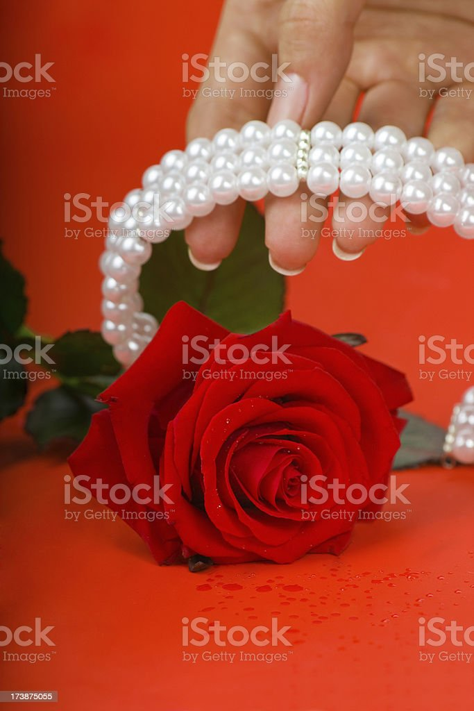 Pearls and Red Rose royalty-free stock photo