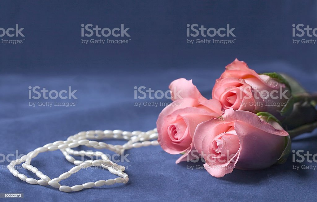 pearls and roses royalty-free stock photo