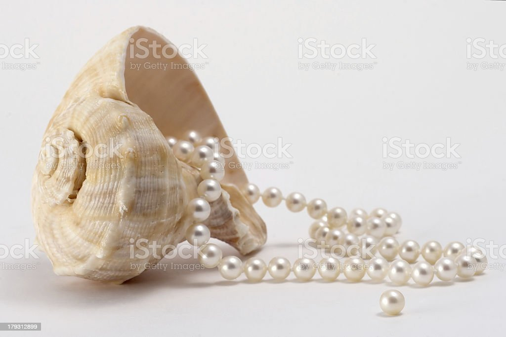 Pearls and Shell royalty-free stock photo