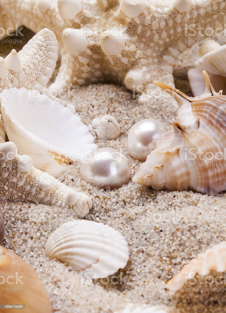 Pearls and shells on the beach stock photo