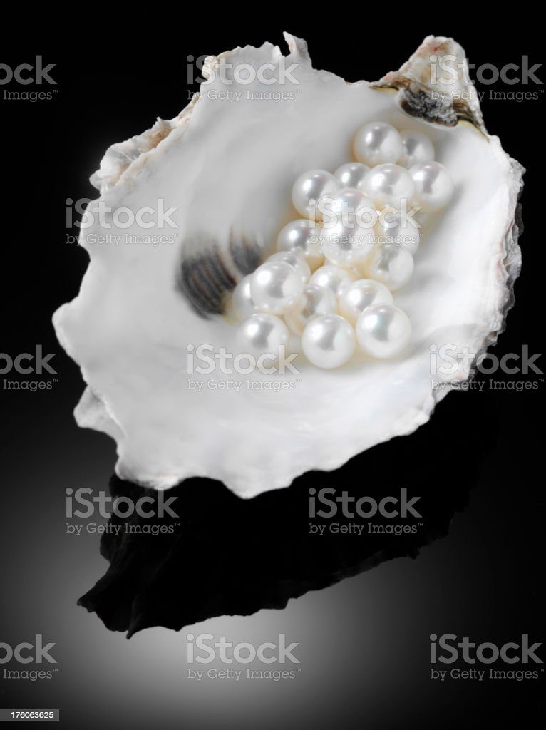 Pearls in a  Oyster Shell stock photo