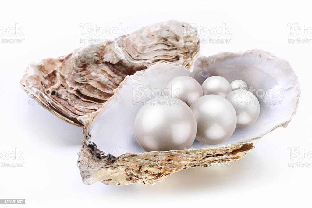 Pearls in a shell on white background stock photo