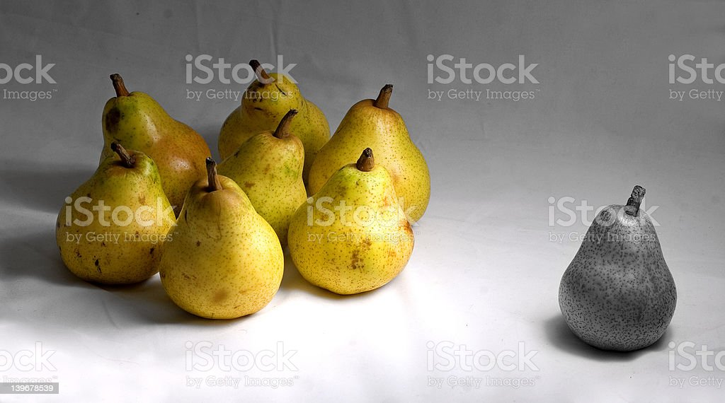 pear,pears stock photo