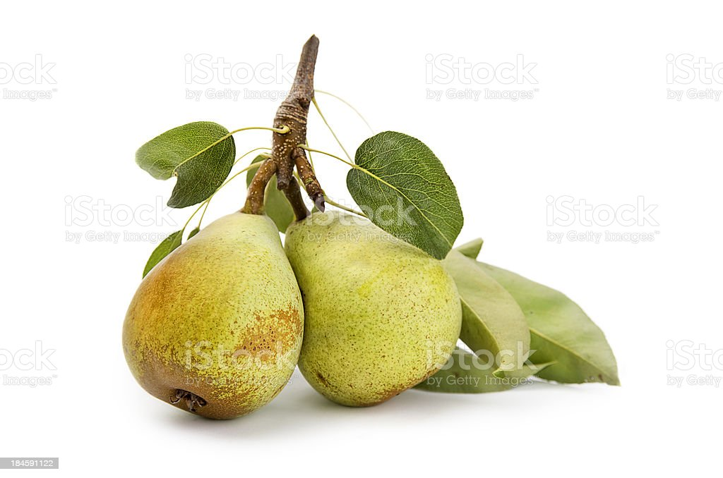 Pears with leaves on white background royalty-free stock photo