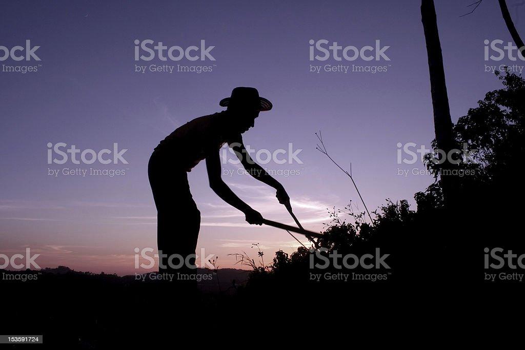Peasant working hard. stock photo