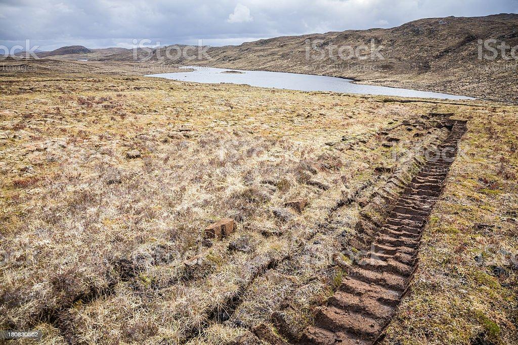 Peat Bog stock photo