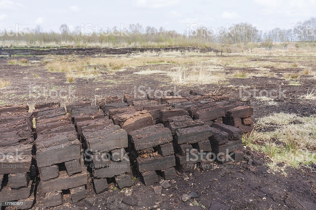Peat digging in Dutch rural landscape stock photo