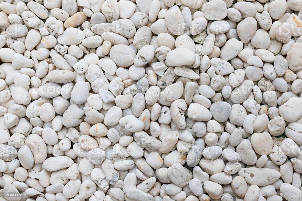 Pebble White stock photo