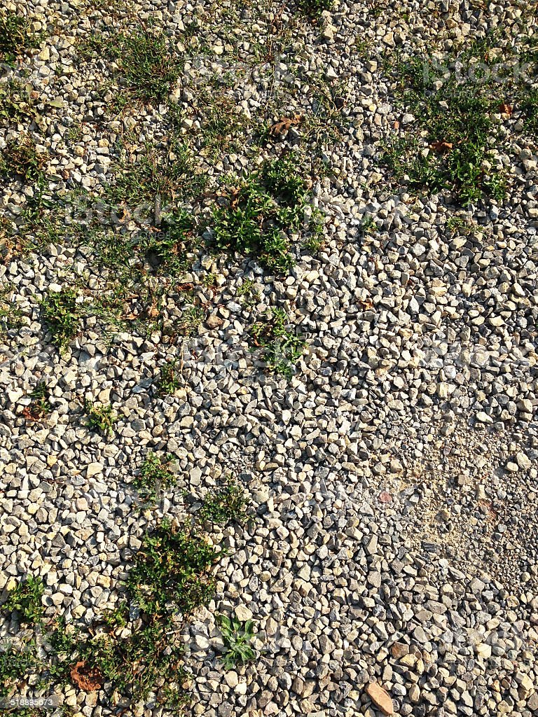 Pebbles with Grass stock photo
