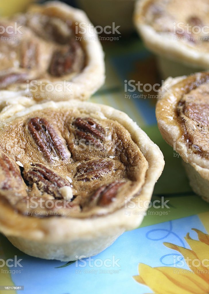 Pecan Butter Tarts royalty-free stock photo