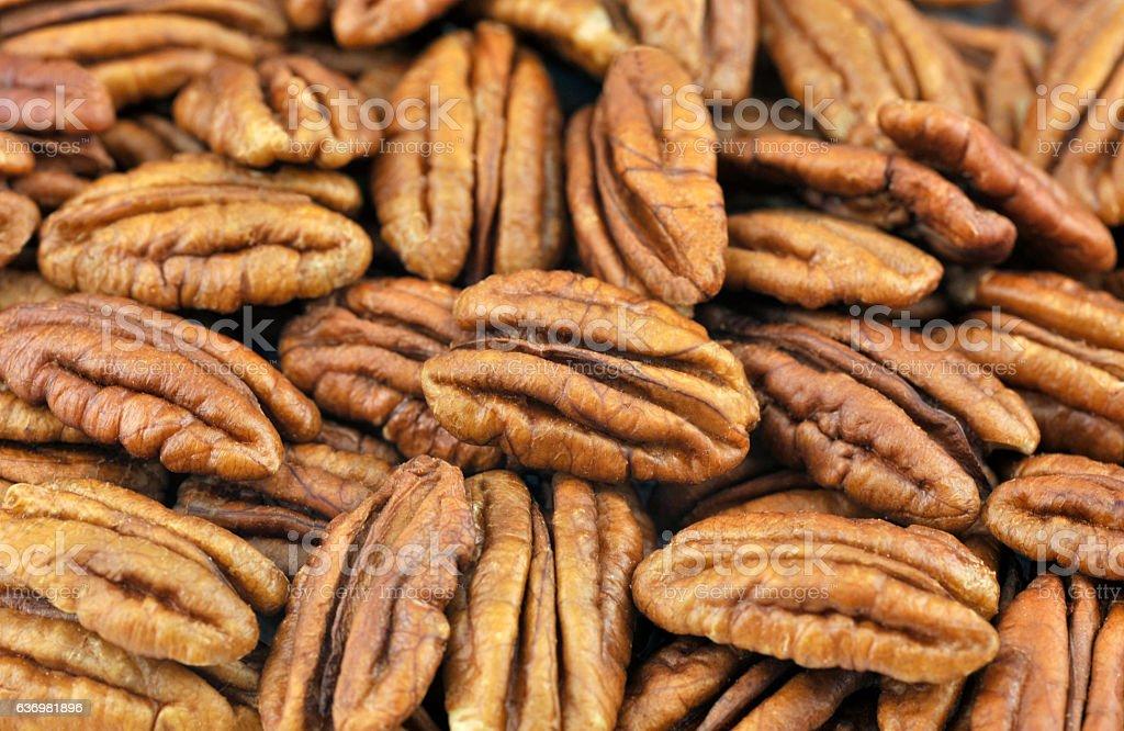 Pecan Nuts stock photo