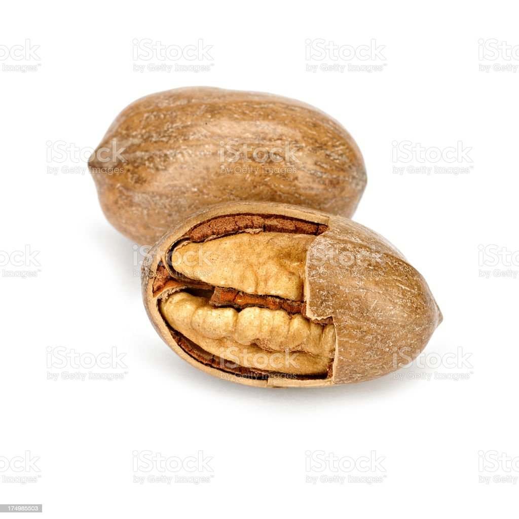 Pecan royalty-free stock photo