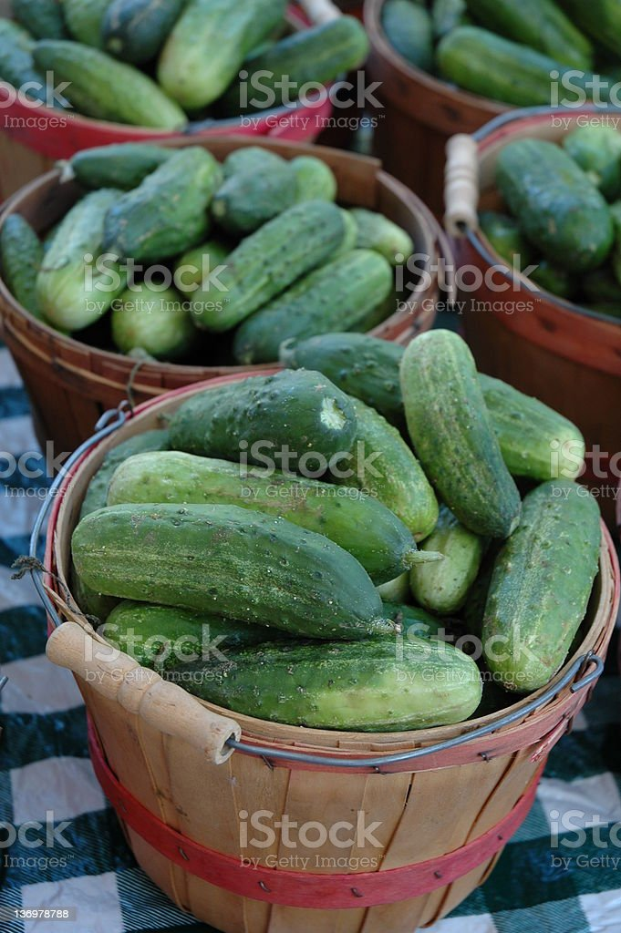 Peck of Pickles? stock photo