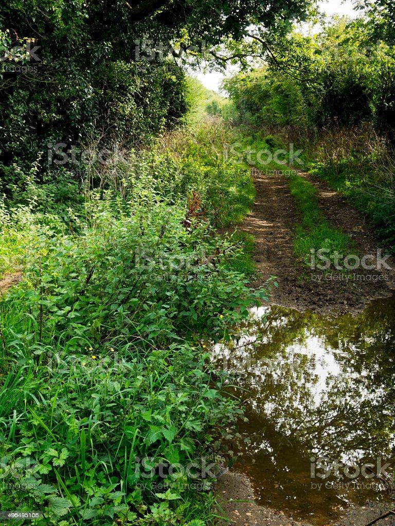 Peddars Way footpath in Norfolk, England stock photo