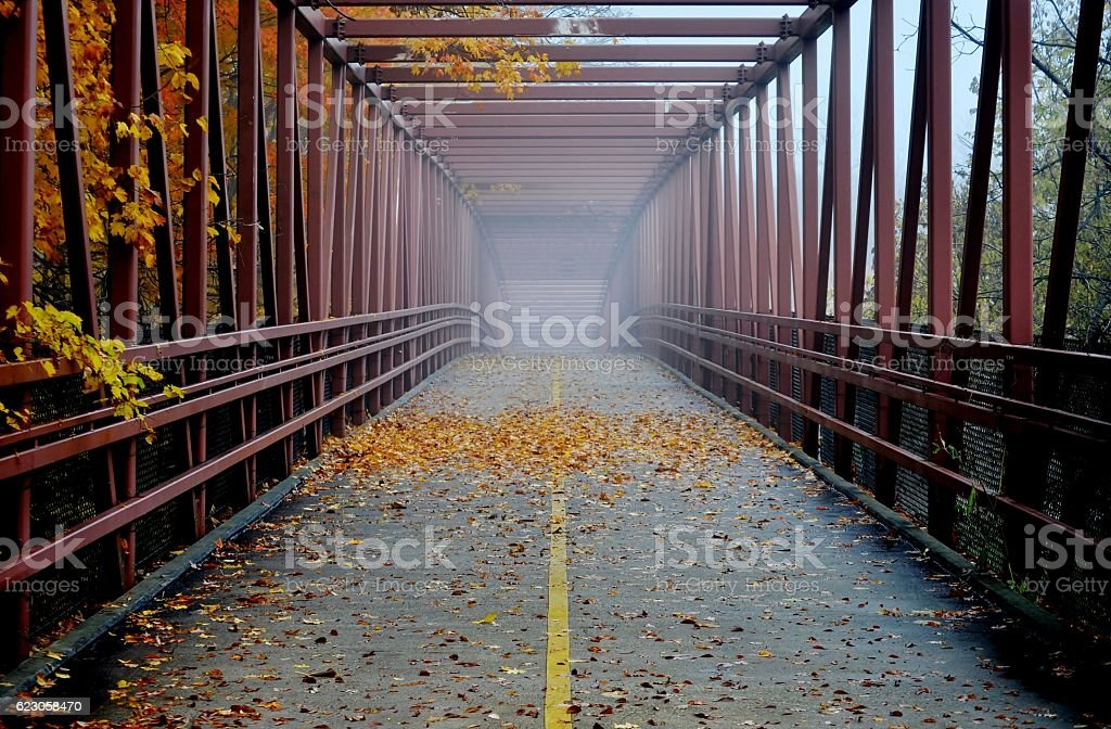 Pedestrian bridge/ bike trial in foggy Autumn day. stock photo