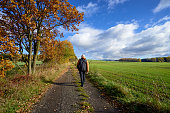 Pedestrian on the road between alley in autumn colors
