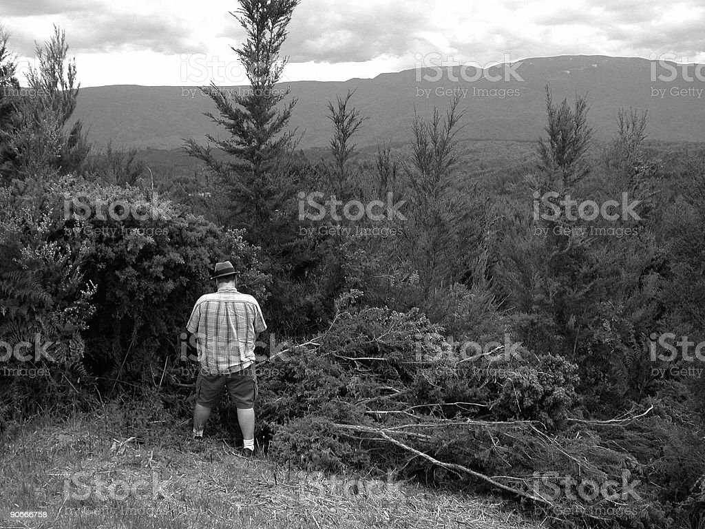 peeing on nature royalty-free stock photo