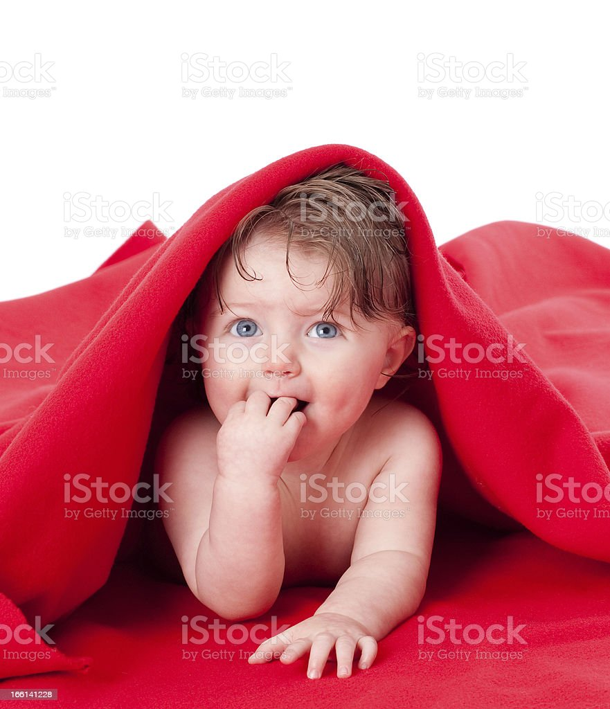 Peek a boo royalty-free stock photo