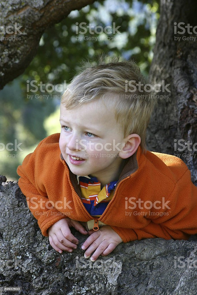 Peek-a-boo stock photo