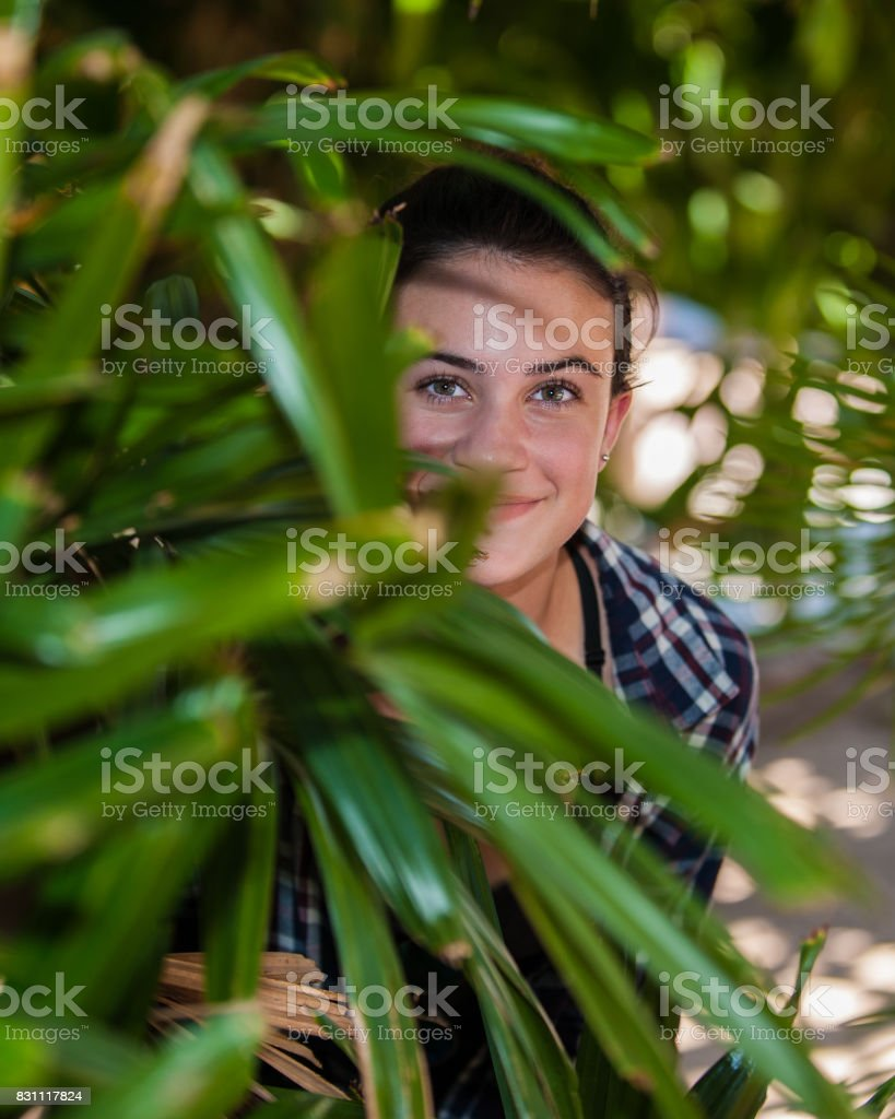 Peeking eyes from the plants stock photo