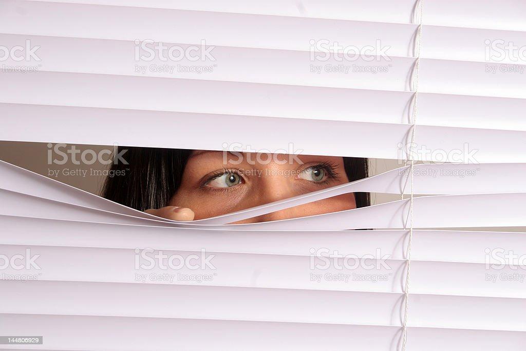 Peeking Out royalty-free stock photo