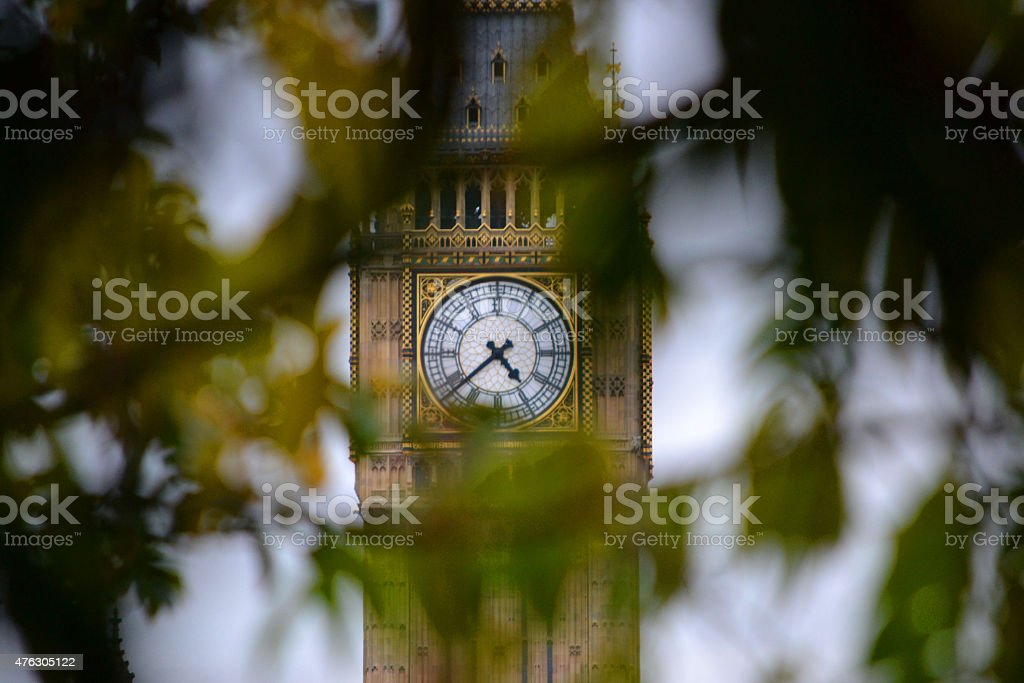 Peeking Through Leaves to Big Ben stock photo