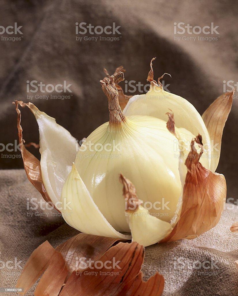 peeled onion stock photo