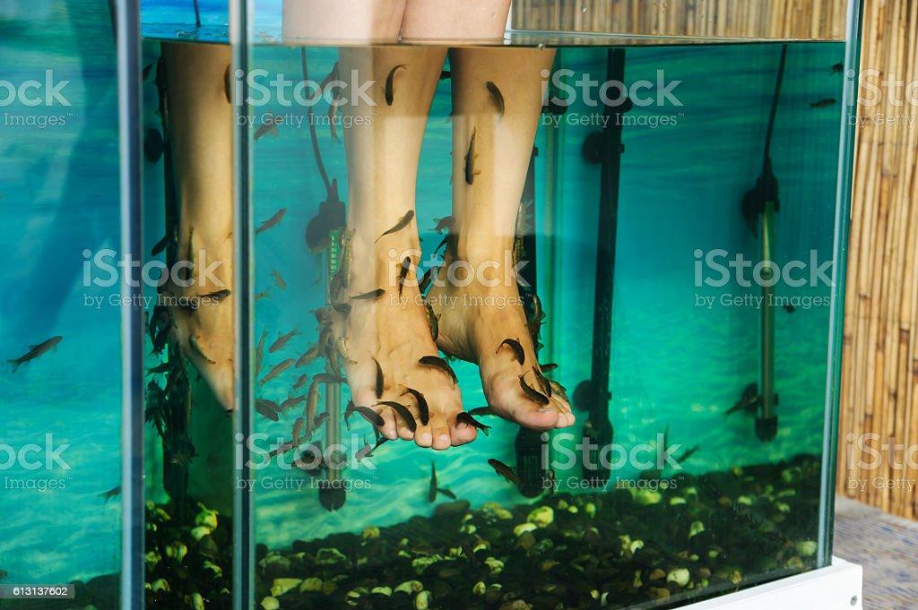 Peeling feet fish. stock photo