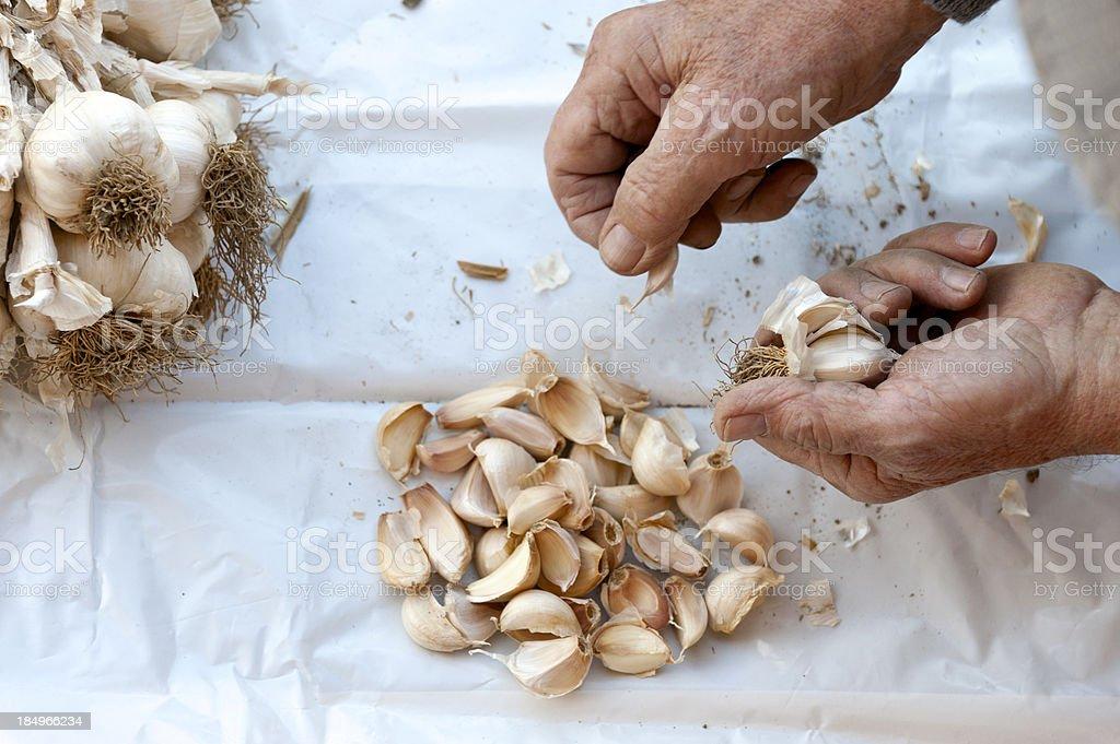 Peeling garlic royalty-free stock photo
