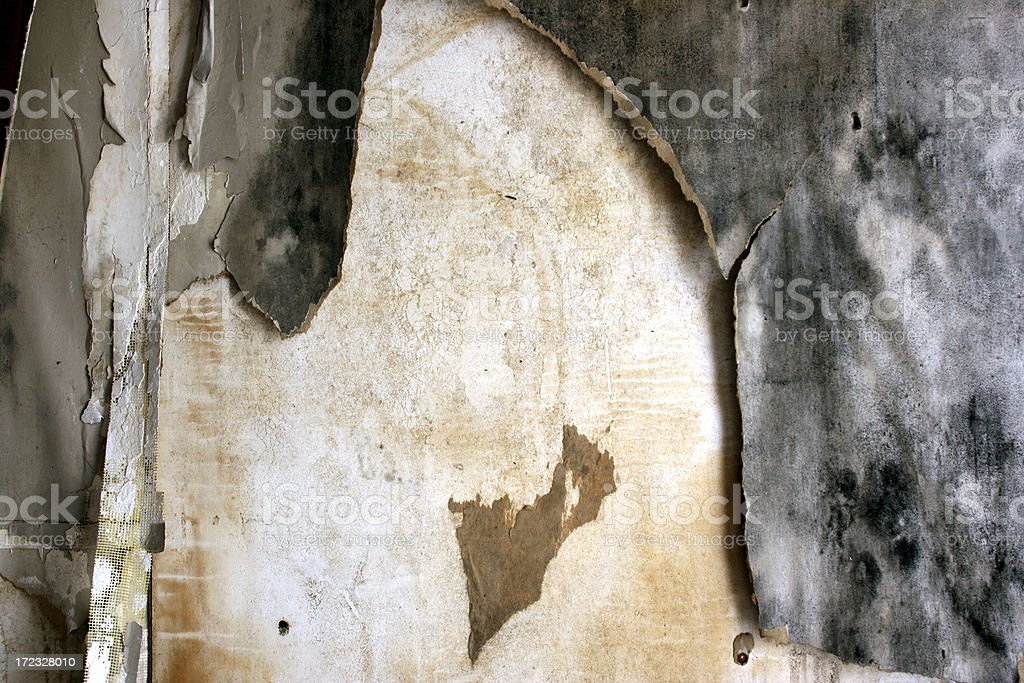 Peeling, water damaged moldy wall paper royalty-free stock photo