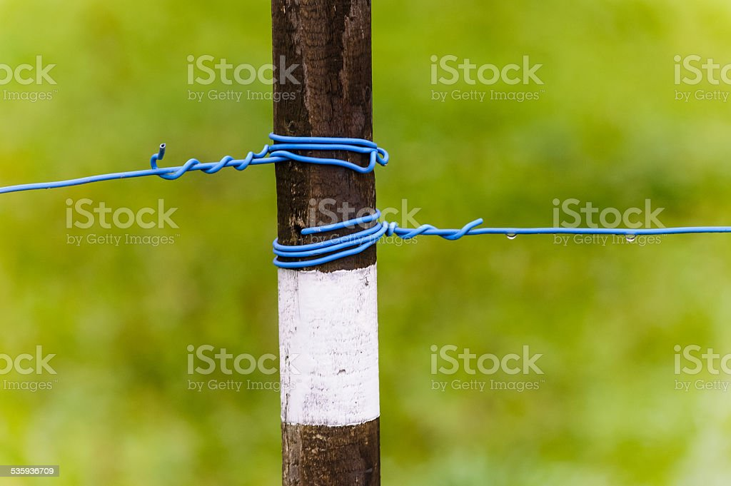 Peg with a tense wire stock photo