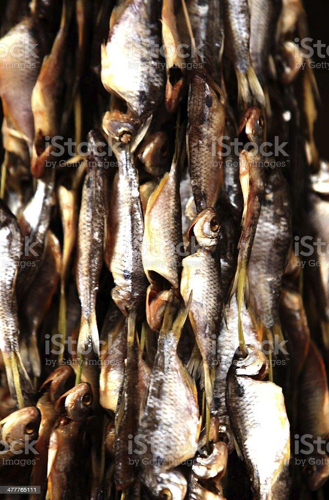 Peixes stock photo