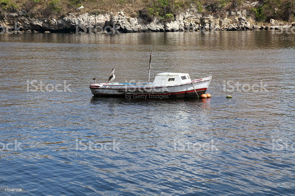 Pelican resting on a barge royalty-free stock photo