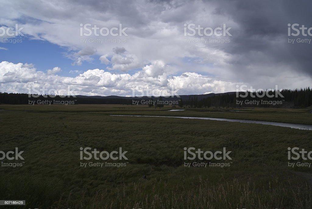 Pelican Valley stock photo