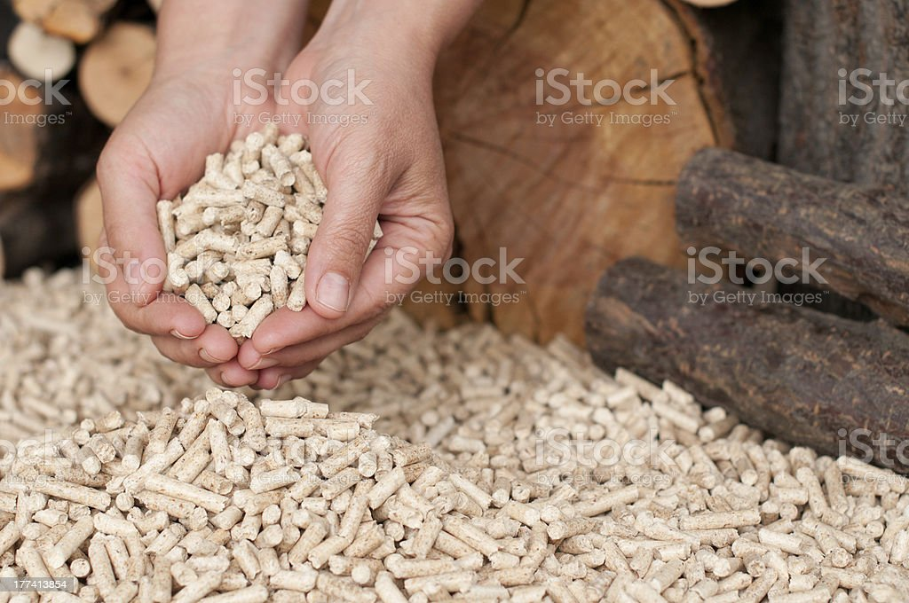 Pellets- biomass stock photo