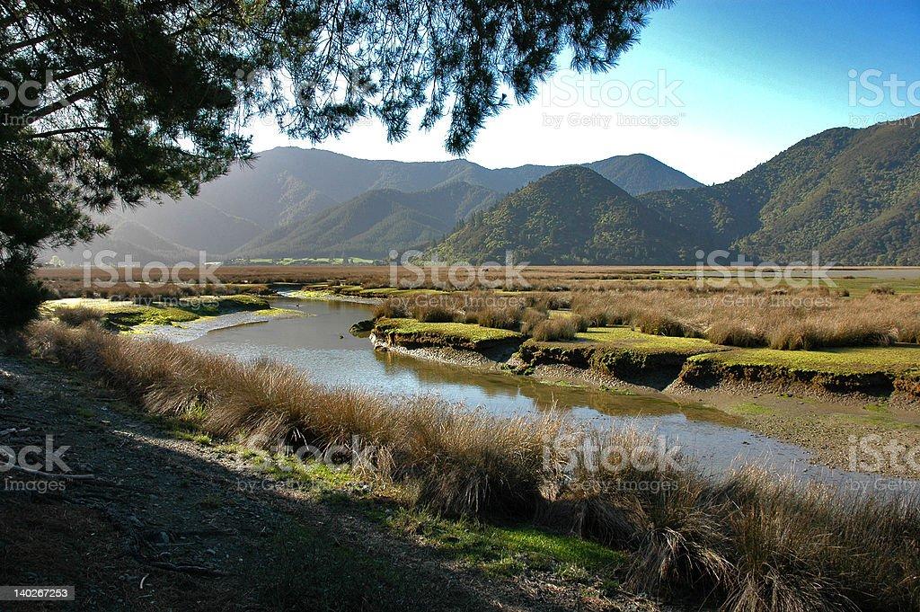 Pelorus River marsh land stock photo