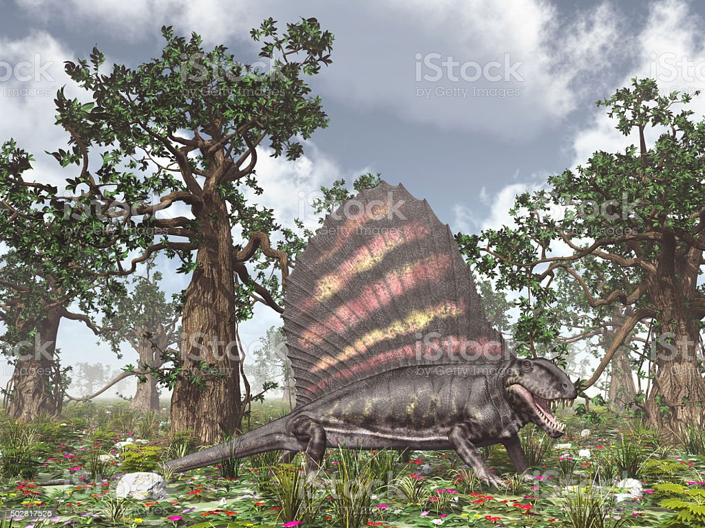 Pelycosaur Dimetrodon stock photo