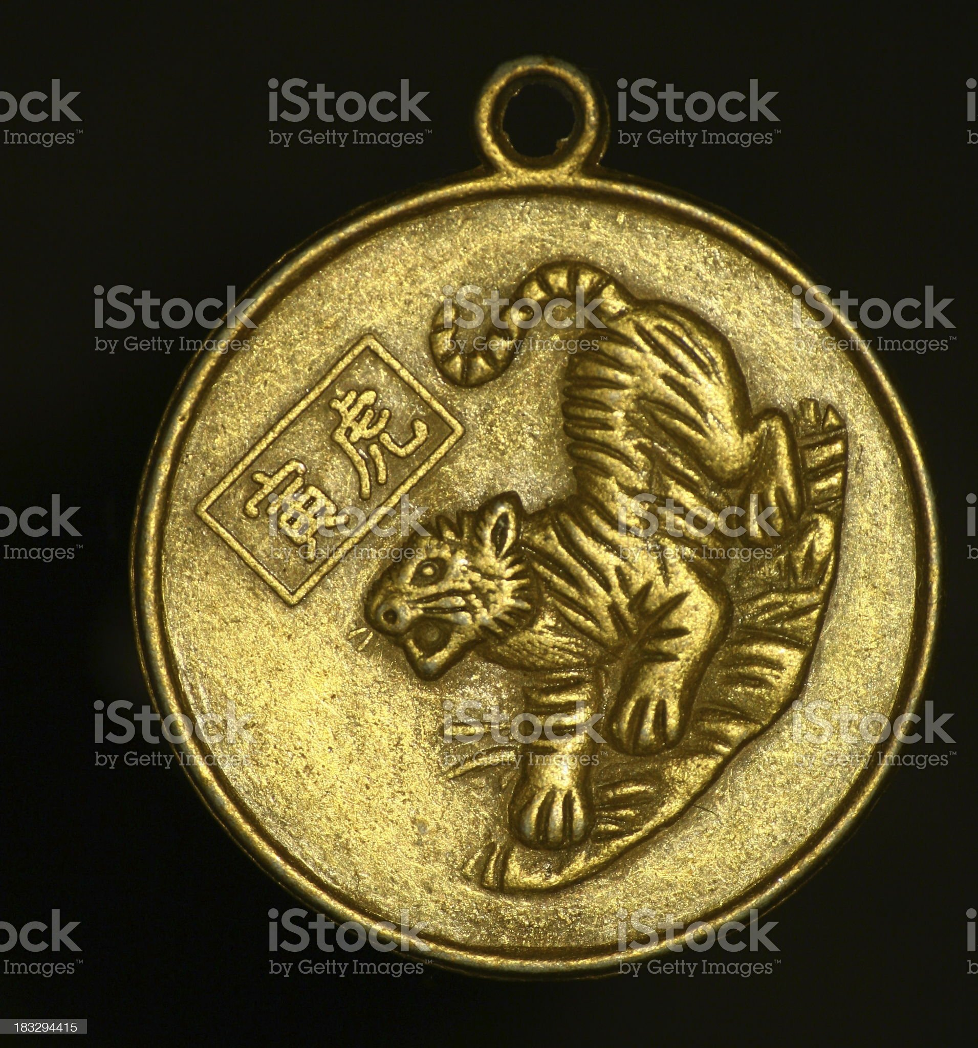 pendant - tiger royalty-free stock photo