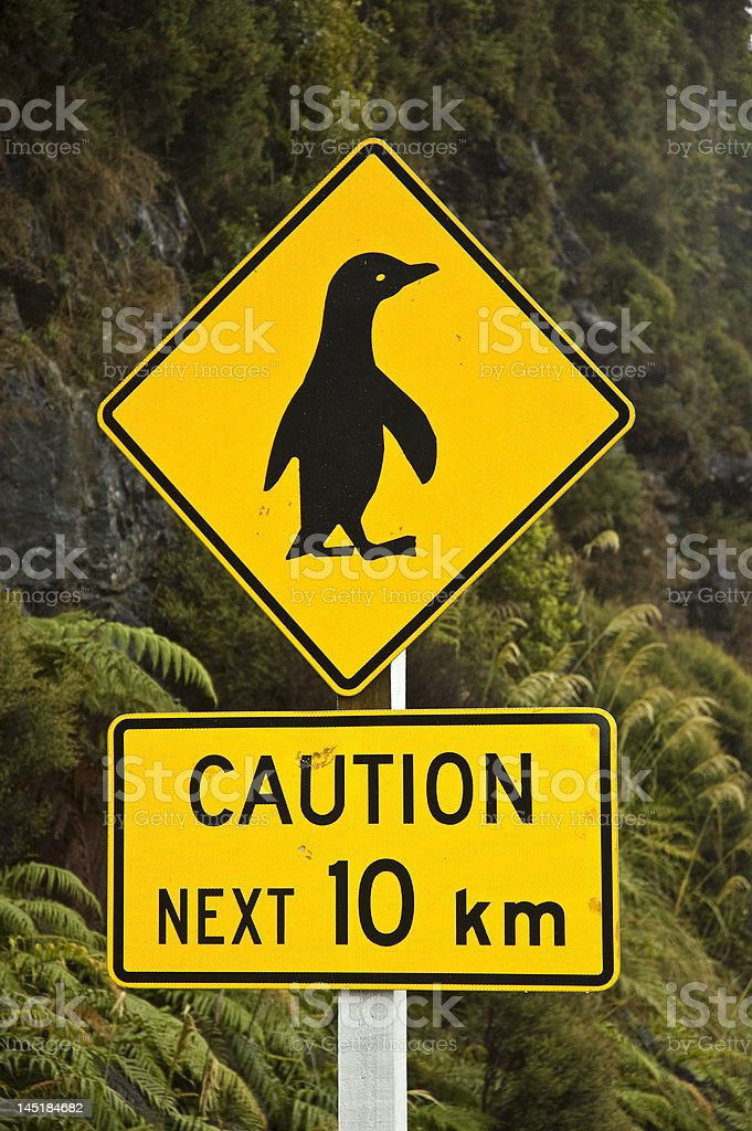 penguin crossing royalty-free stock photo