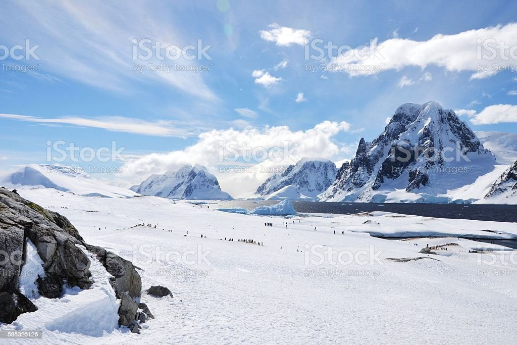 Penguins and People, Perspective stock photo