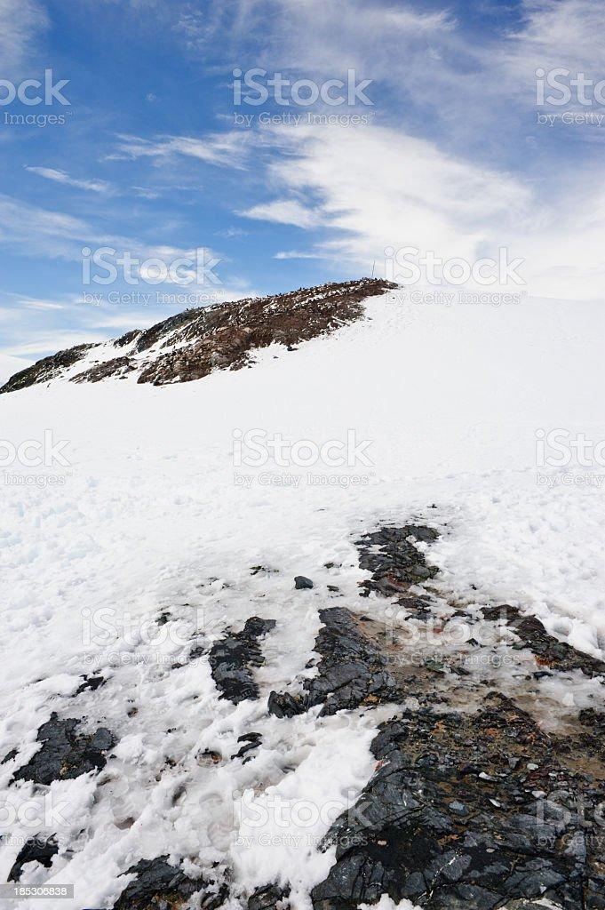 Penguins hill at Mikklesen Harbour stock photo