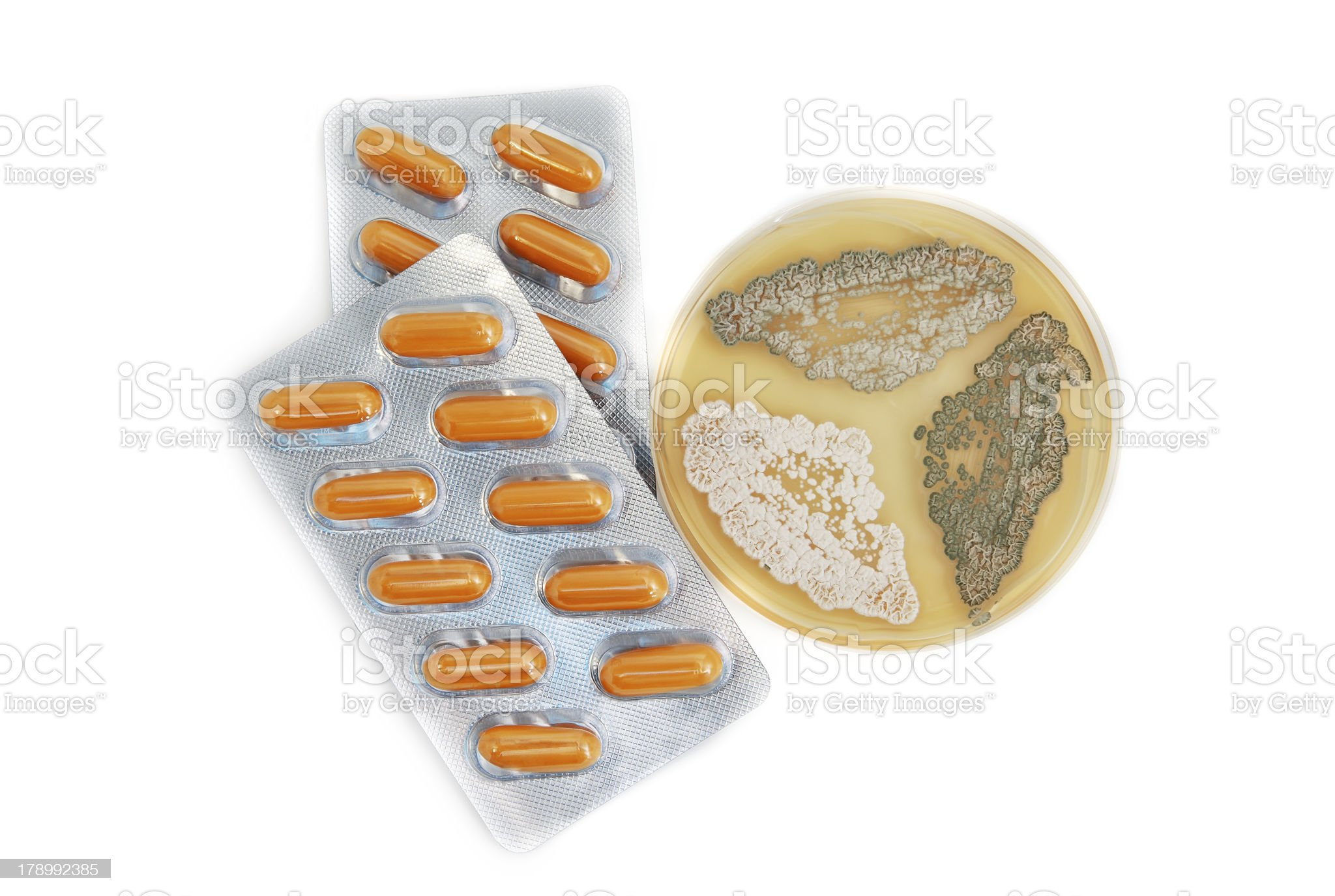 penicillin antibiotics and fungi royalty-free stock photo