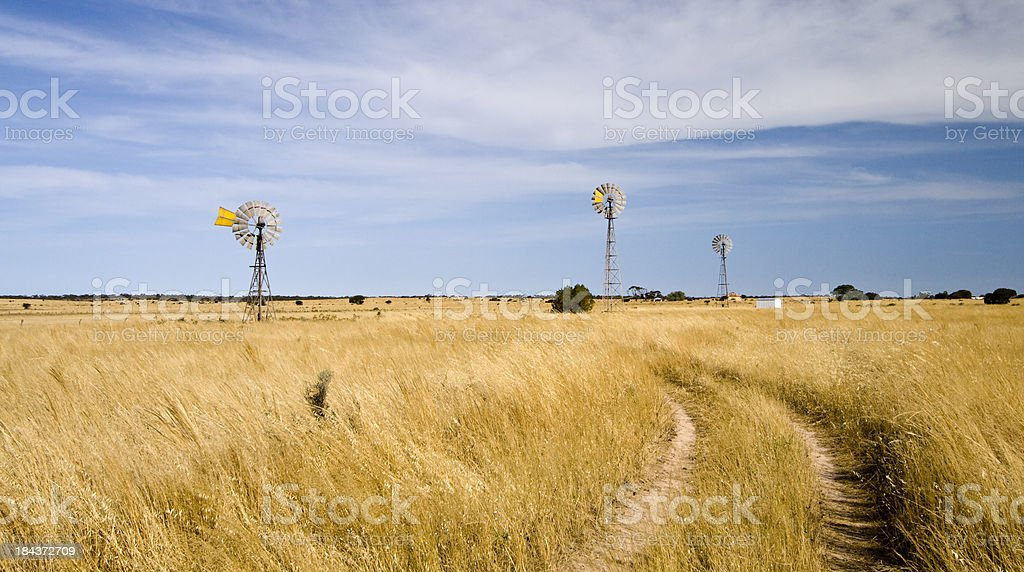 Penong Windmills stock photo