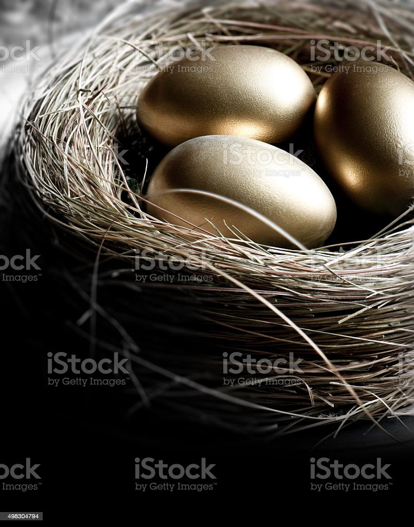 Pension Nest stock photo