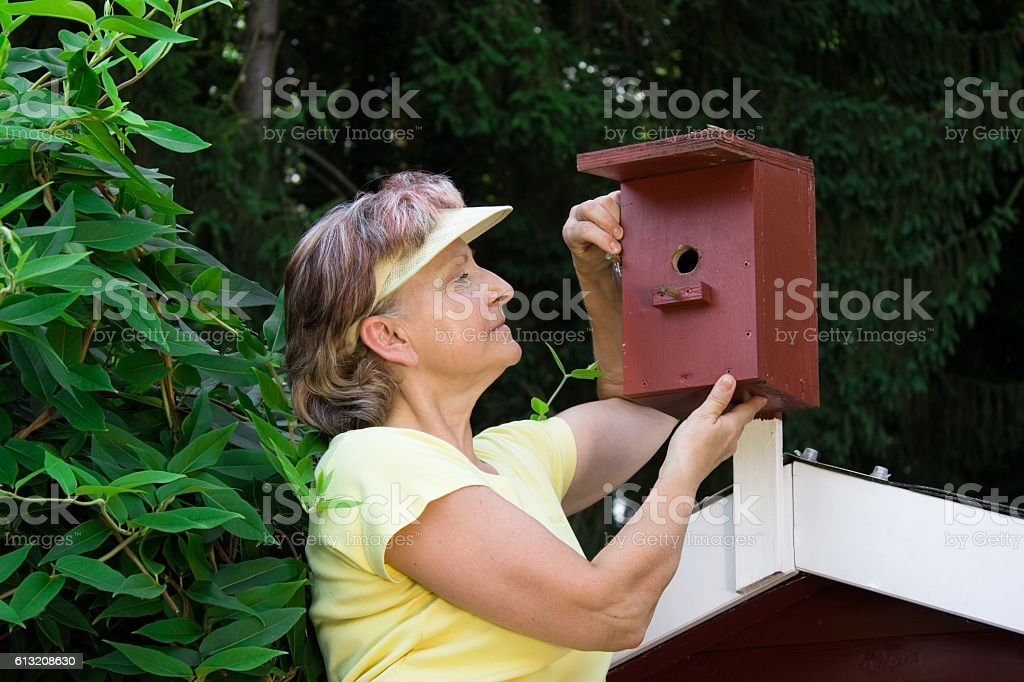 Pensioner with a nest box stock photo