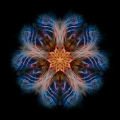 Pentagonal Abstract