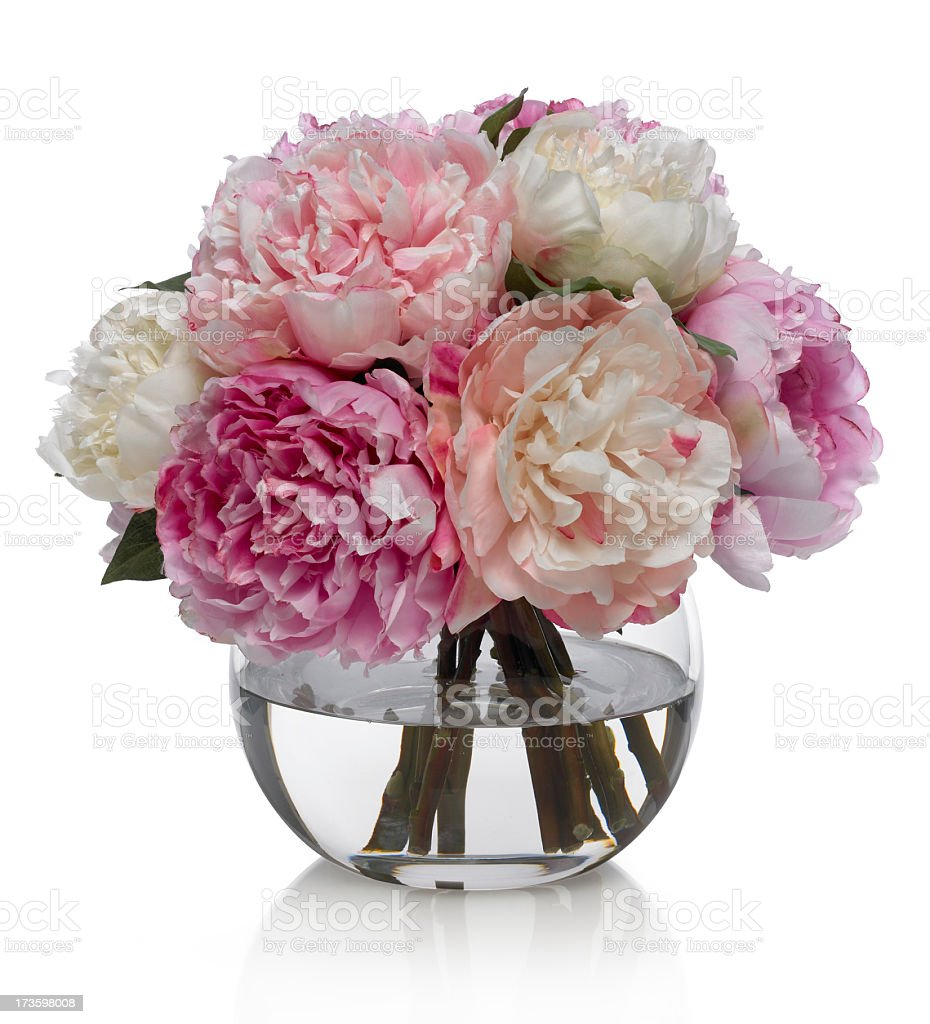 Peony Bouquet in glass bowl on a white background royalty-free stock photo