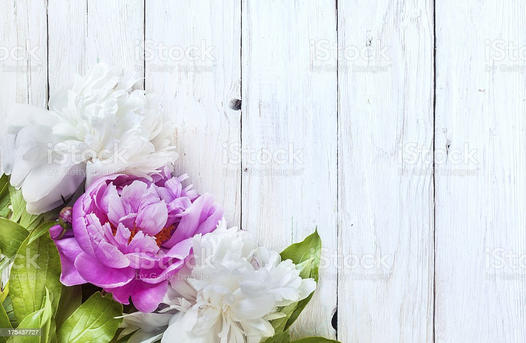 Peony on aged wooden table stock photo
