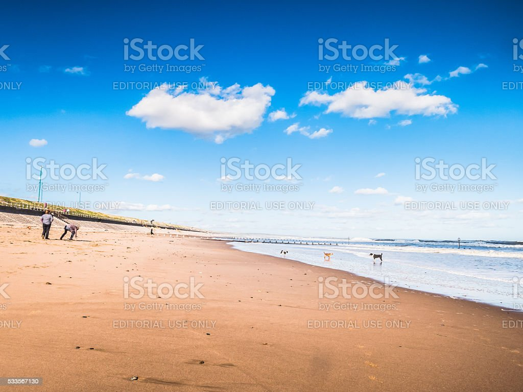 People and Dogs on Aberdeen Beach, UK. stock photo